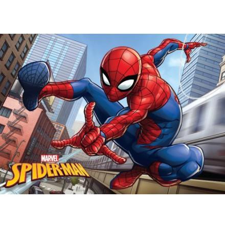 Badrumsmatta Spindelmannen